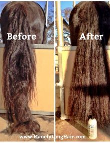 Results with Mane-ly Long Hair on the tail de-tangler works fast